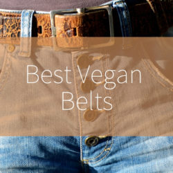 best vegan belts