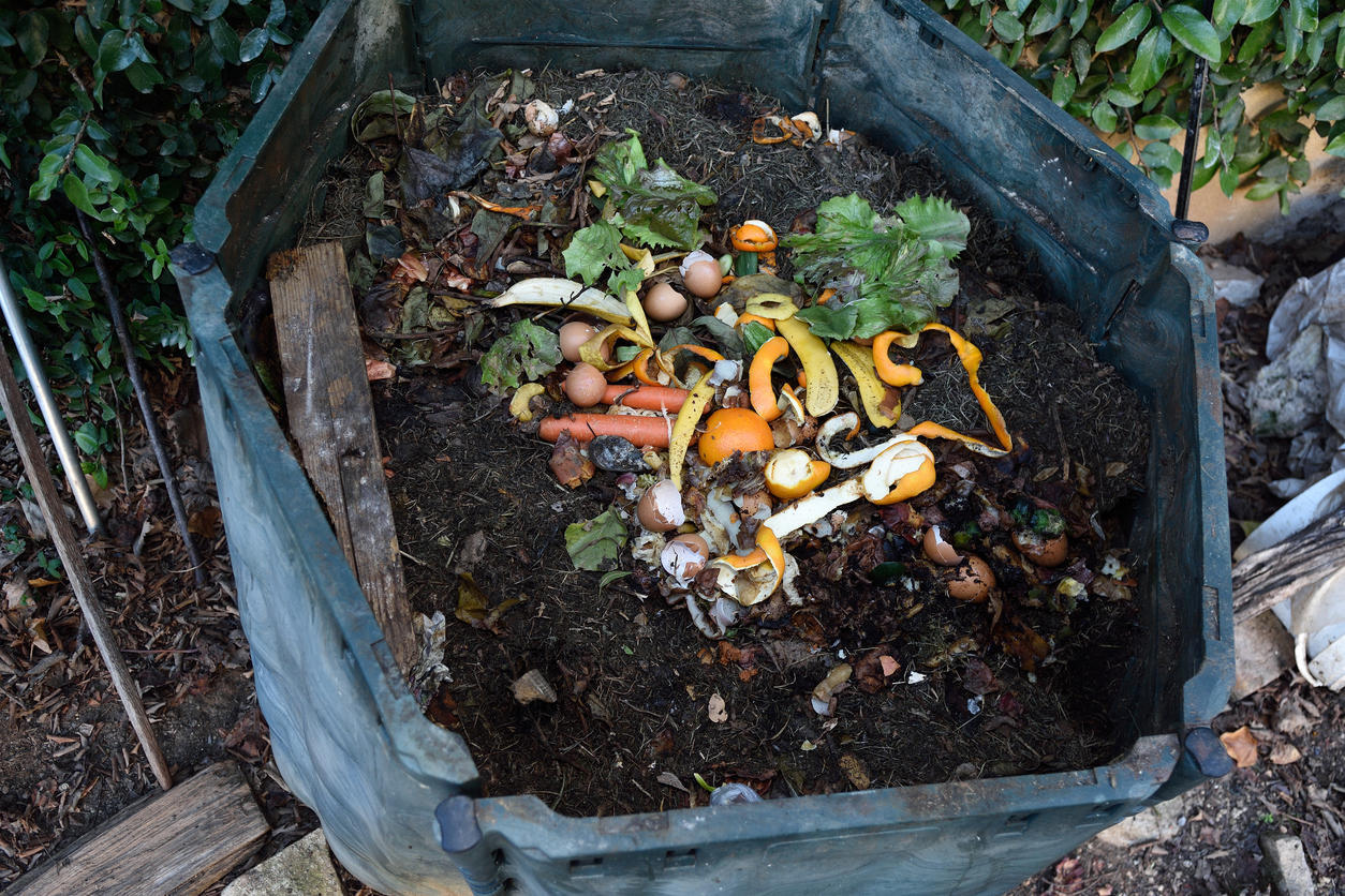 worm bin for composting