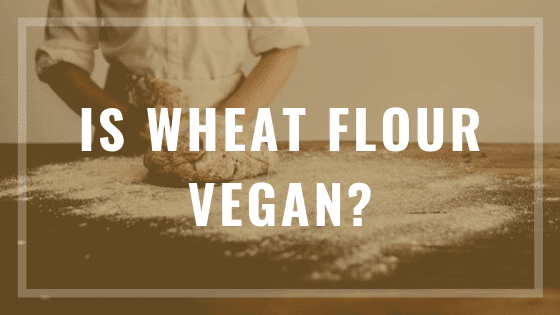 is wheat flour vegan?