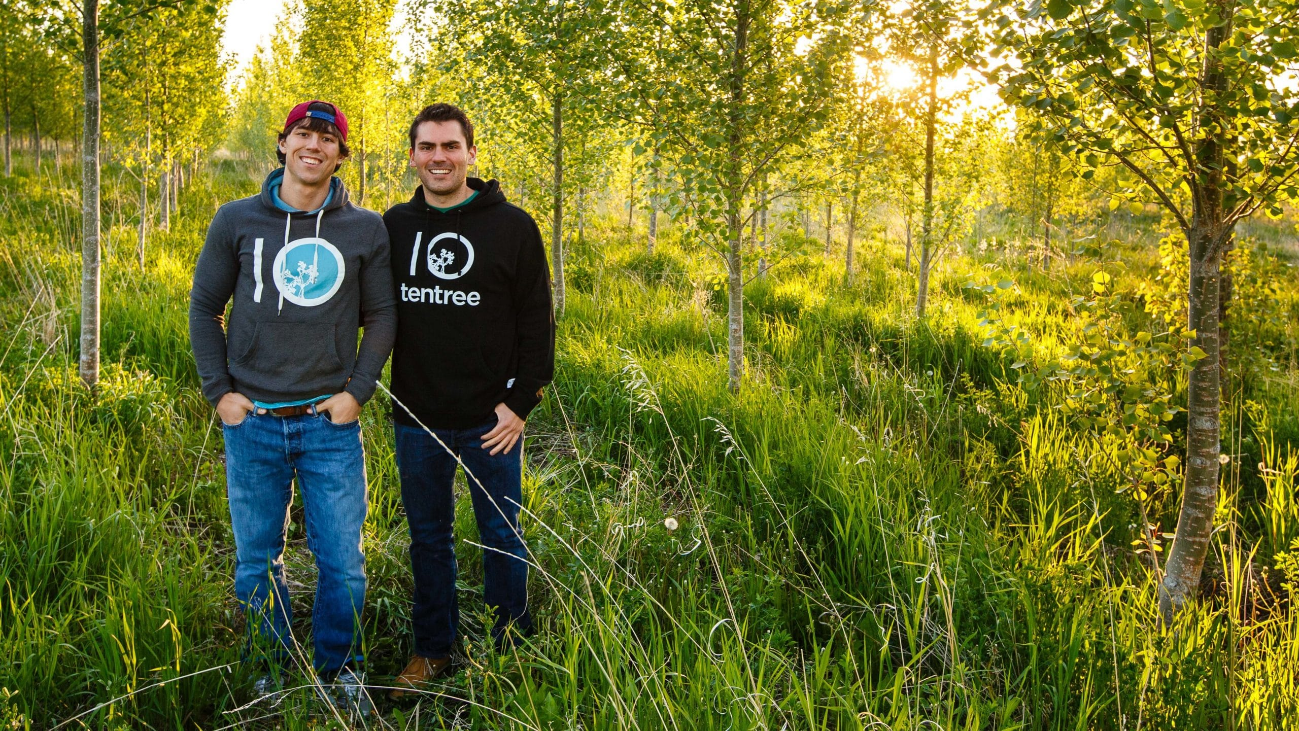 Tentree brothers