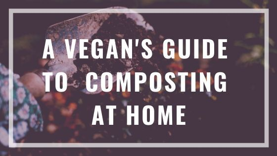 vegan composting guide