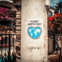 eco-friendly ideas to save the planet