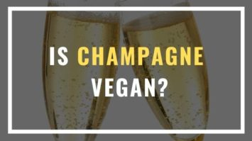 is champagne vegan