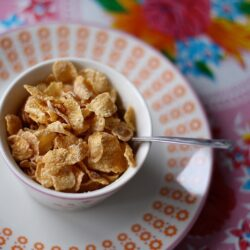corn flakes vegan