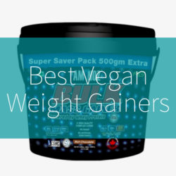 best vegan weight gainer