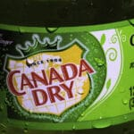 Is Ginger Ale Vegan? Here Is What You Should Know