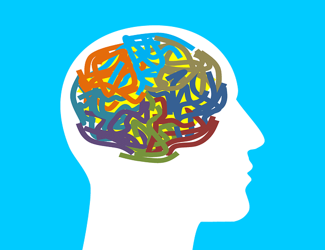 mental health and gut health