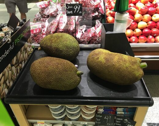 Where to Buy Jackfruit & Find It at the Grocery Store