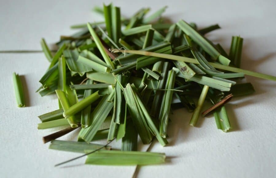 Where to Buy Lemongrass & Find It in the Grocery Store