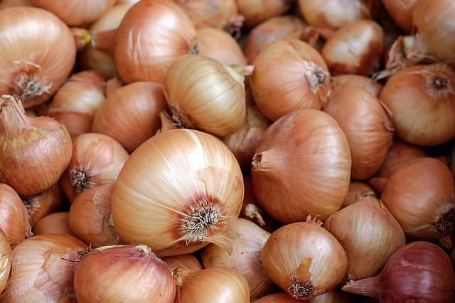 Are Onions Vegetables? (Full Answer Here)