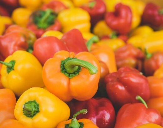 Bell Peppers: Are They Fruits or Vegetables? (Full Answer Here)