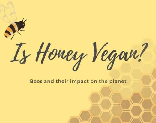 Can You Eat Honey and Call Yourself Vegan?
