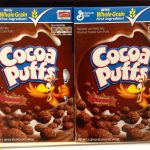 Are Cocoa Puffs Vegan? (Here's all you need to know)