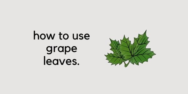 using grape leaves