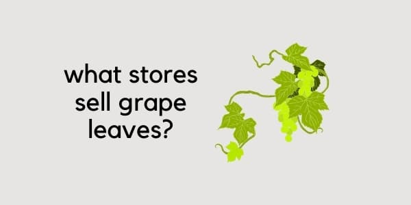 what stores sell grape leaves
